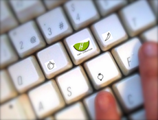 La nutricion online